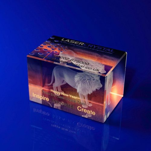 Rectangle Bespoke Awards - 3d engraved Lion Print