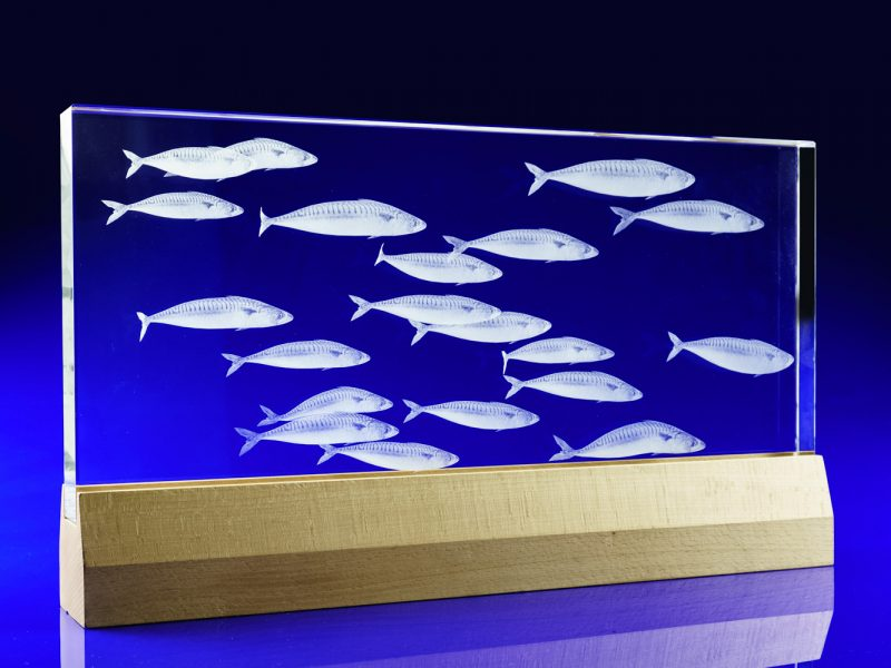 Crystal Statement piece - school of fish